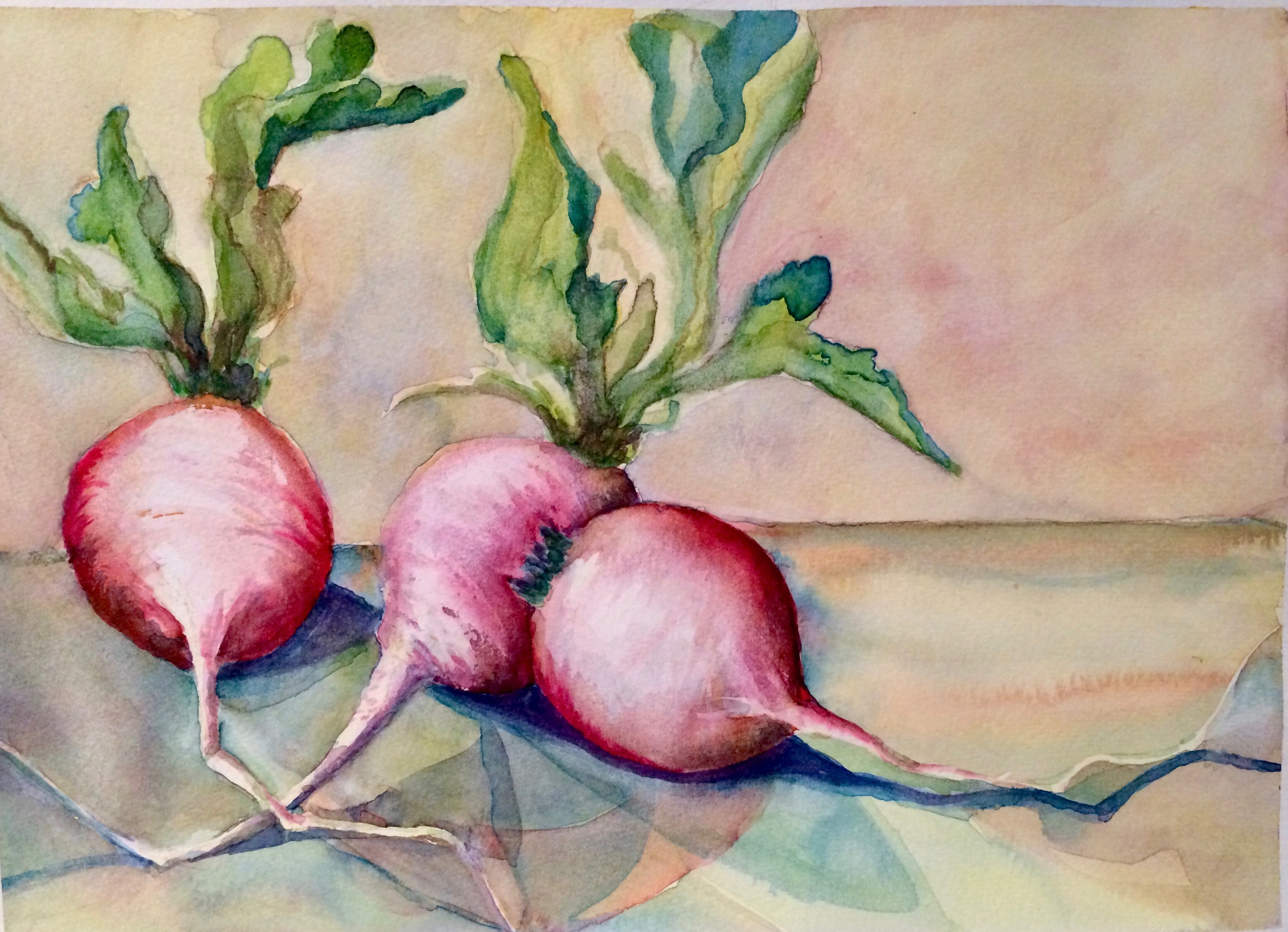 Radishes 1 copyright Peggy Willett
