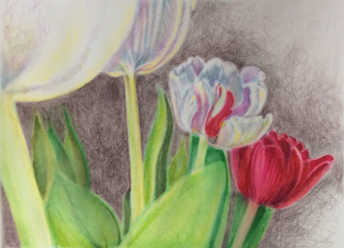 Step 4 - final tulips